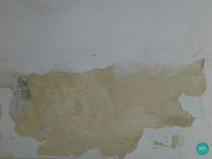 damp-ceiling