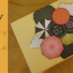My Envy Box August 2016 Review